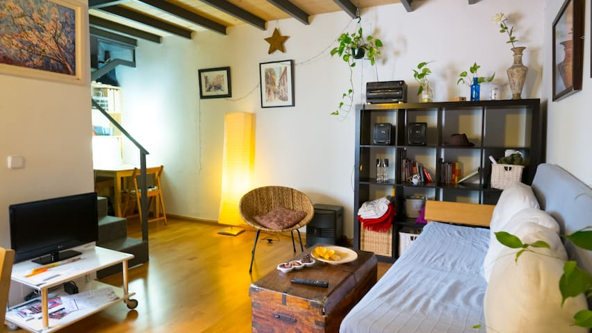 Beautiful cozy loft madrid center