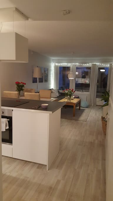Livingrom, dining table and kitchen area.