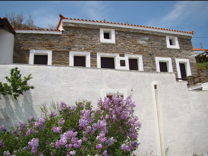 Andros 4 All Seasons - StoneHouse Kochylou Villa