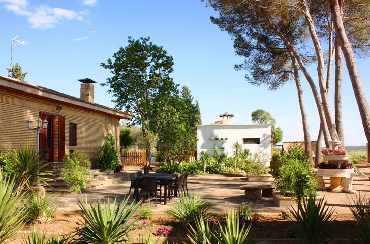 Jardín exterior privado alrededor de la casa