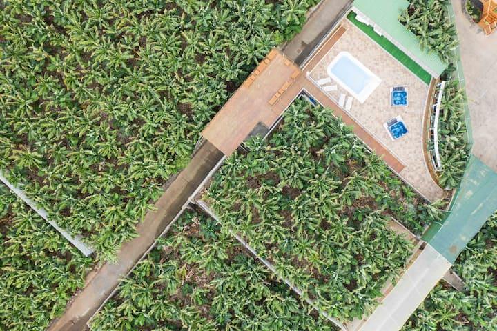 Hacienda LA DEHESA (Apt 2 Dormitorios Superior)
