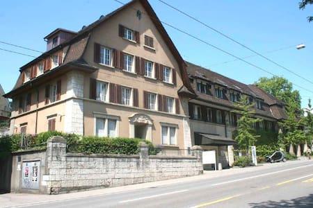 TOP 3 1/2 Zimmer-Dachwohnung - 샤프하우젠