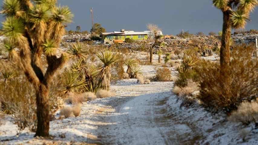 The Joshua Tree Green House surrounded by rocks, Yuccas and Joshua Trees and covered with snow. January 2013