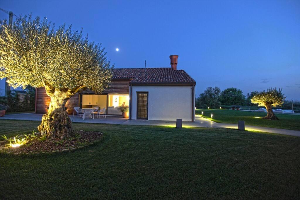 Esterno | Villa Sacchetta