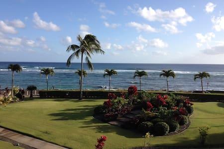 PIOPU BEACH KAUAI OCEAN VILLA - one week left 2.17 - コロア