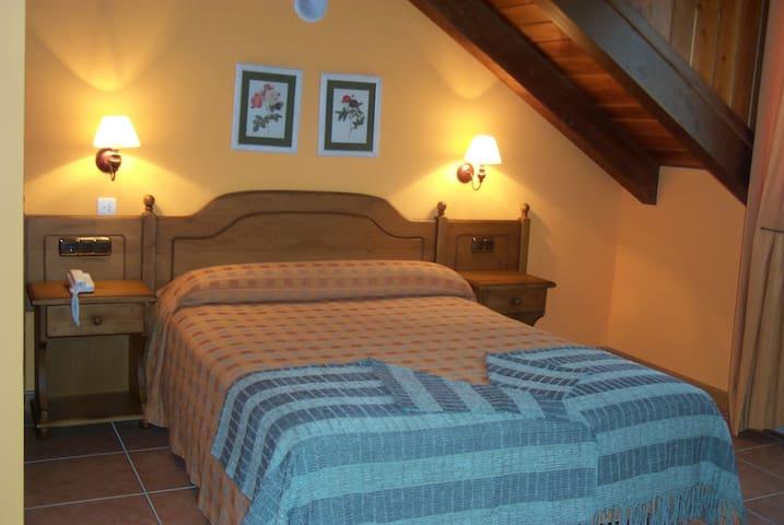 Habitación Doble en el Parque Nacional de Ordesa - Nerín - Bed & Breakfast