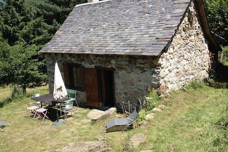 La illo d'Ustou, montagne d'Ariège - Ustou