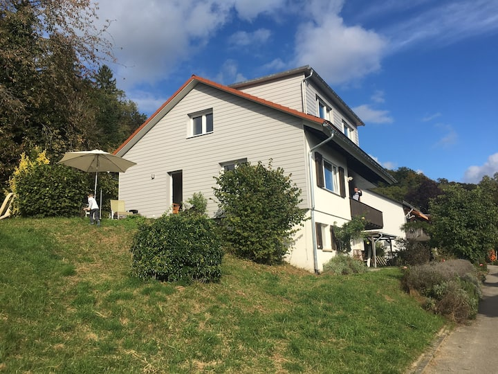 Panorama view to the Alps - Hochrhein house