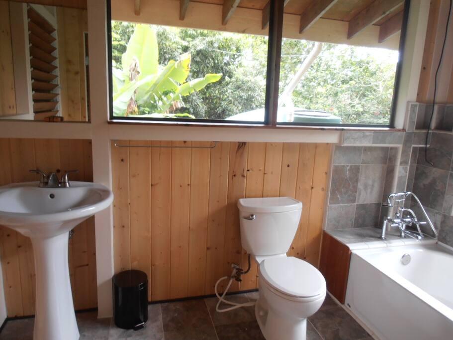 Brand new bathroom, loads of ventilation and light.