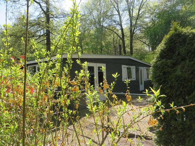 Chalet on the Veluwe. Enjoy peace and nature! - Epe - Chalé