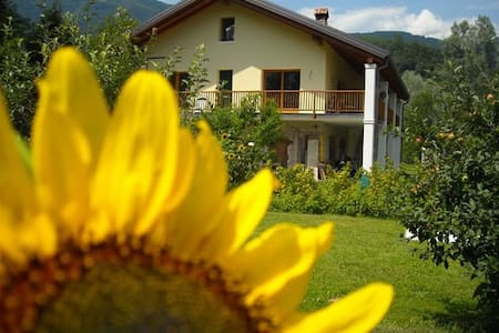 Il Girasole B&B - Feltre - Bed & Breakfast
