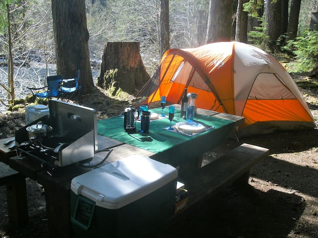 2 Man Basic Tent Camping Gear Only - Port Hadlock-Irondale