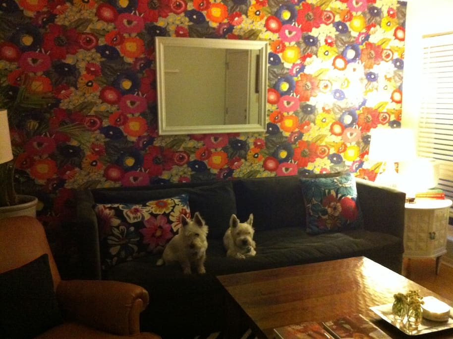 This is the living room, plus my two pups.