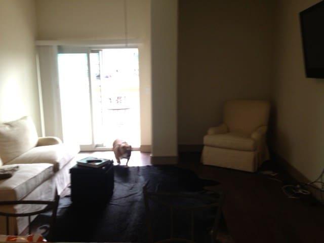 SXSW Hi-Rise Apartment!!!!