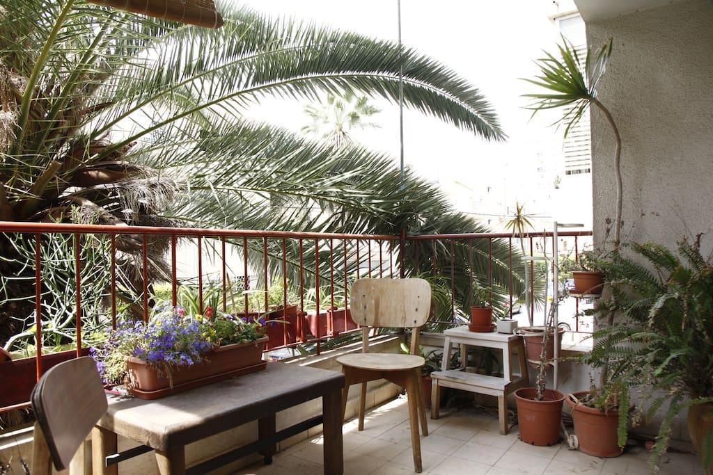 amazing balcony