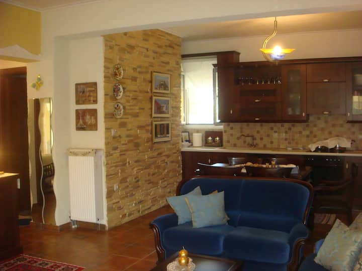 Spacious Apartment at the foot of Mount Olympus