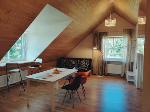 Modern lake-view apartment in Trakai City Center