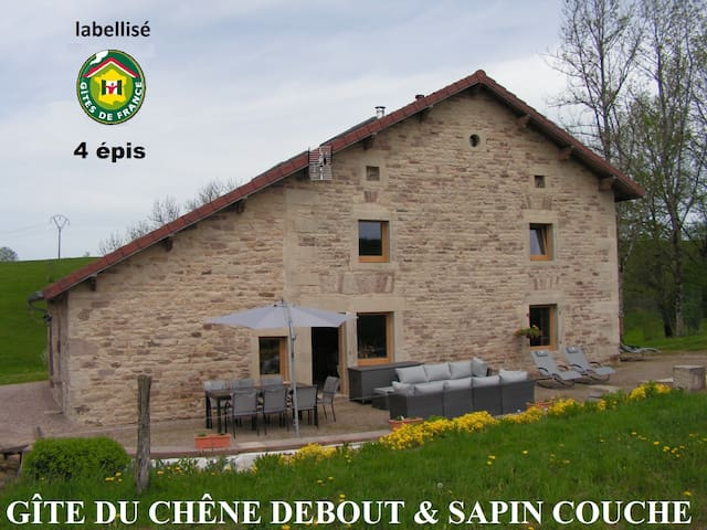 MAISON DE CARACTERE, IDEALE POUR UNE GRAND FAMILLE - Xertigny - Casa
