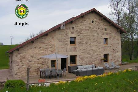 MAISON DE CARACTERE, IDEALE POUR UNE GRAND FAMILLE - Xertigny - Rumah