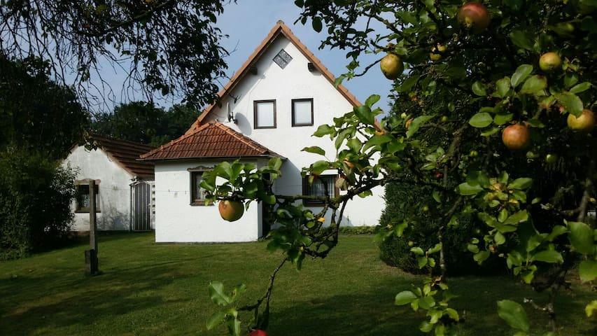 Ein Haus nur für Sie allein! - Friedeburg - Casa
