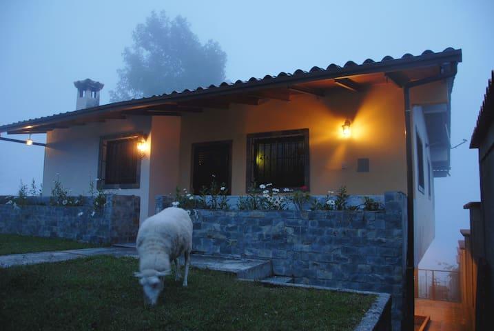 Casa Alto Viento