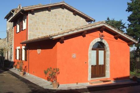 RED HOUSE - CASA ROSSA / BAGNOREGIO - Castel Cellesi