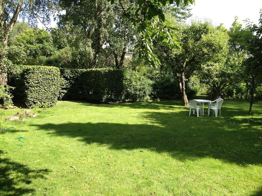 Lush garden for you to enjoy