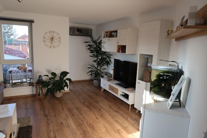 Gemütliches Apartment in Hofheim - Netflix + Klima