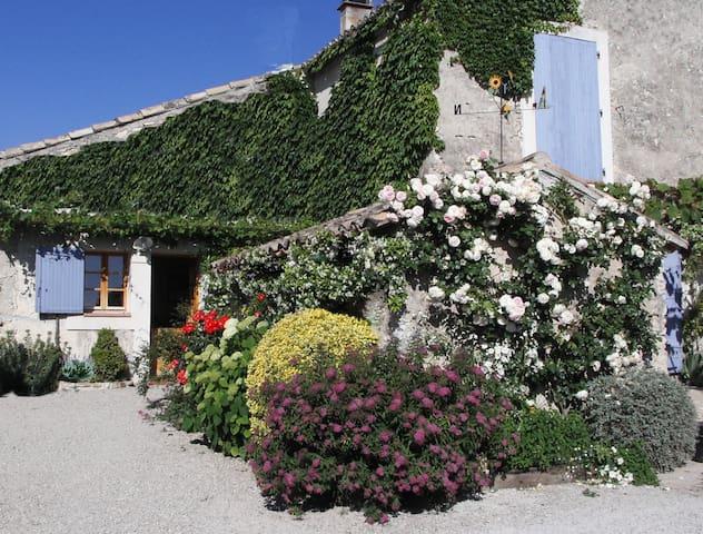 La Grange Vieille - Vaison-la-Romaine - Appartement
