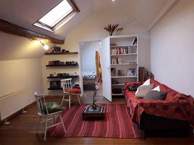 Open style apartment in the heart of Brussels - Брюссель - Квартира