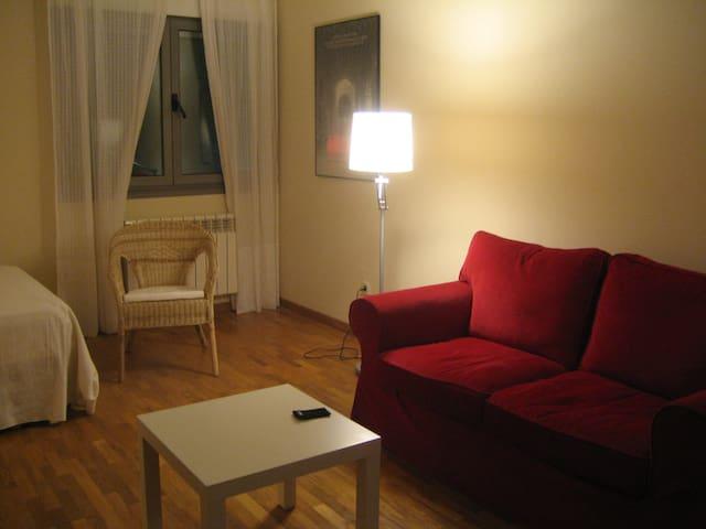 Estudio centro OVIEDO - Oviedo - Loft