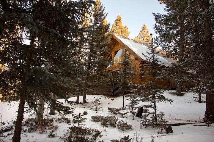 Family Built Cabin In Cripple Creek