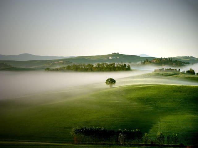 Amazing Apart. in the Countryside! - Castelnuovo Berardenga - Leilighet