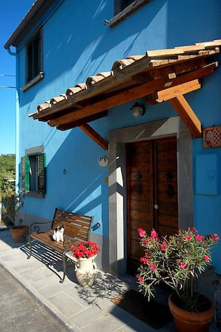 BLUE HOUSE - CASA BLU  near CIVITA DI BAGNOREGIO
