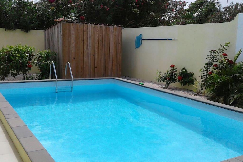 Het geweldige zwembad.