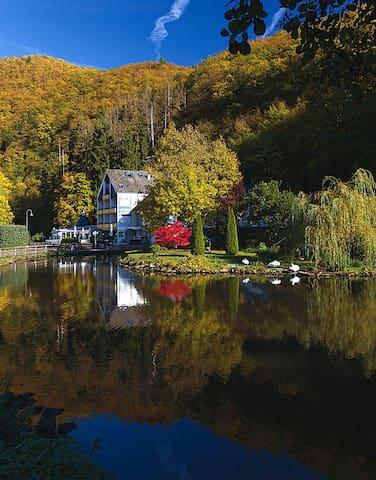 Traum - Ferienhaus am Schwanenteich
