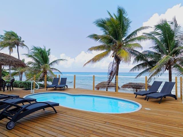 Snorkelers Beachfront Paradise