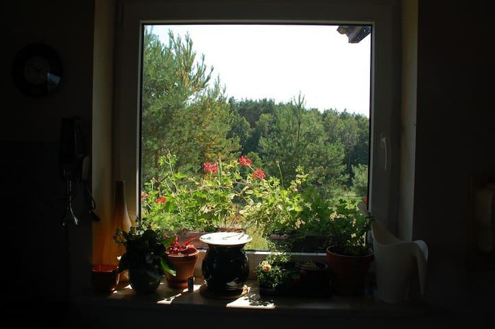 willa tuZur, apt.II, Tuchola Forest - Gmina Osie - Appartamento