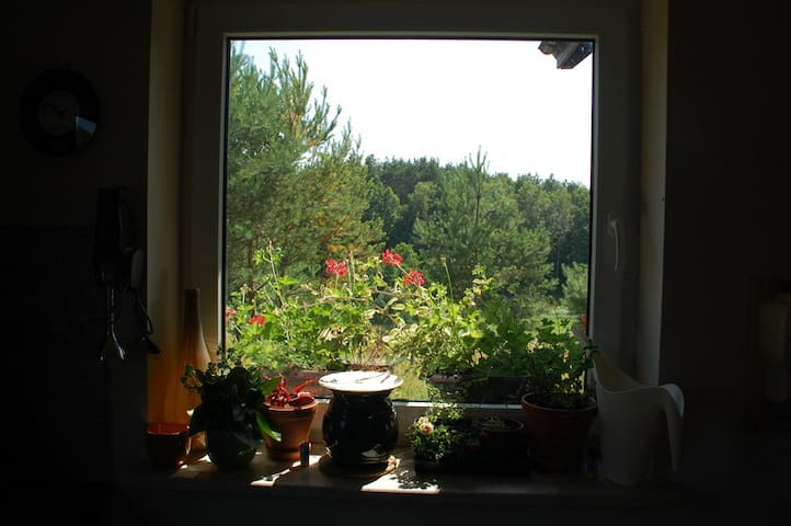 willa tuZur, apt.II, Tuchola Forest - Gmina Osie - Apartment