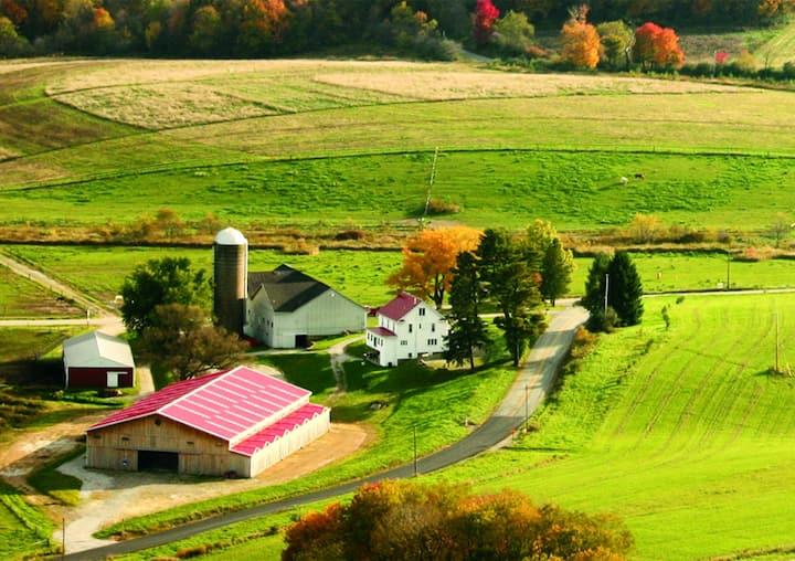 Entire House at Horizon View Farms