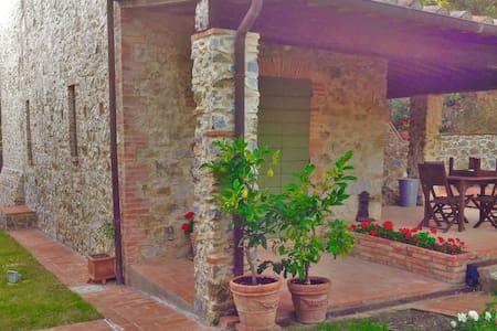 Splendida villa immersa nel verde - Pari