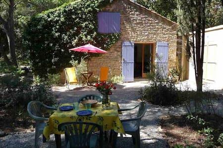 La Nouvelle - Villa with pool  - Mazan