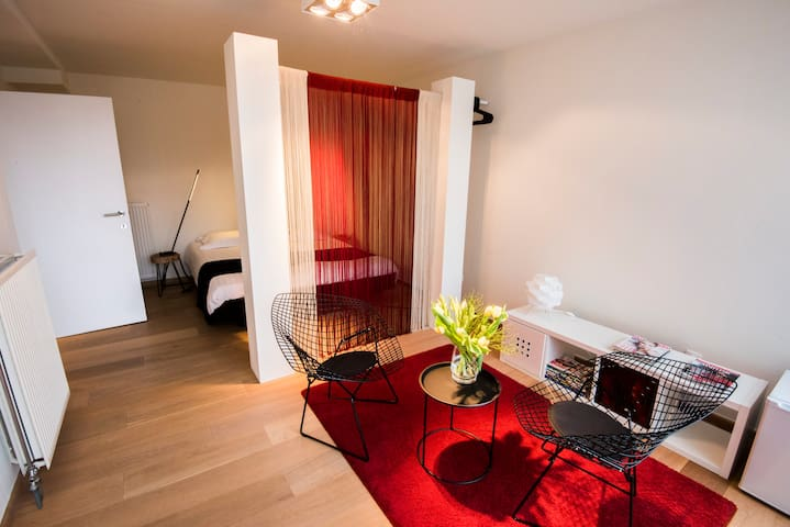 Private rooms/with parking/private entry/centre - Ghent - Apartment