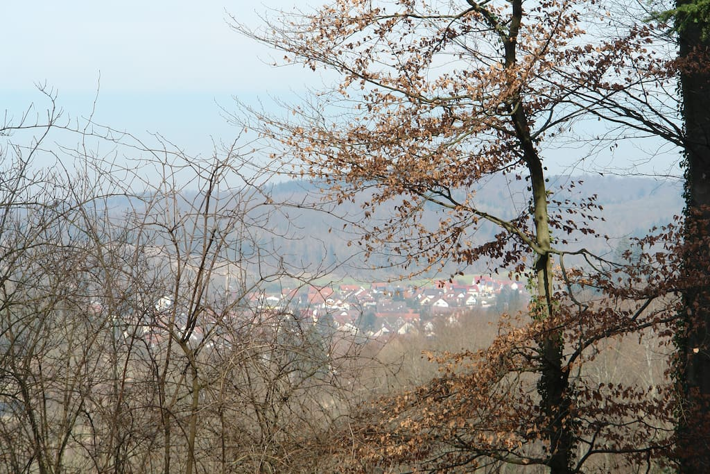 view on Teningen-Heimbach, surrounded by vine, fields and black forest, close to Freiburg, France...
