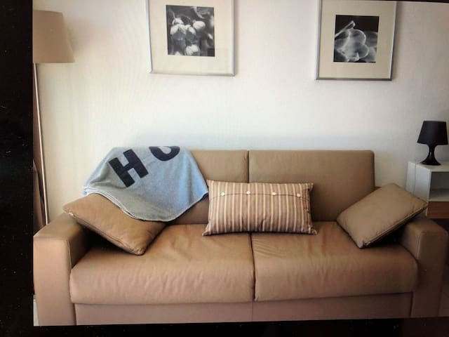 Canapé-lit dans la pièce à vivre
