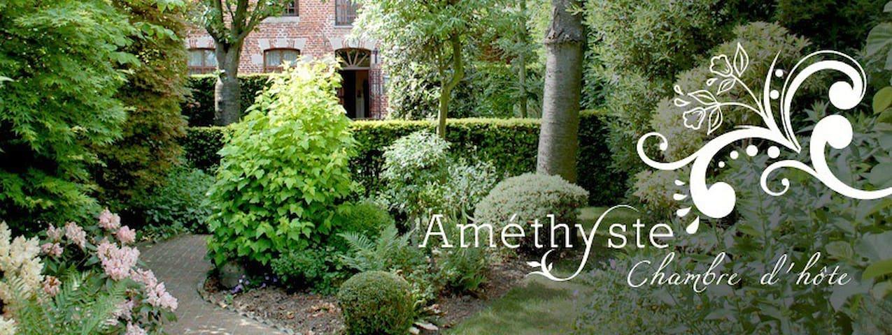 Amethyste, une maison de caractère  - Peruwelz - Szoba reggelivel