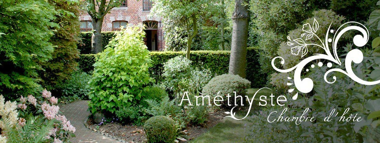 Amethyste, une maison de caractère  - Peruwelz - Bed & Breakfast