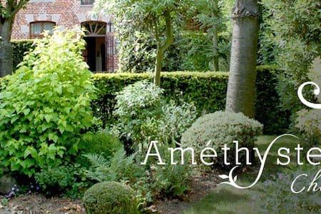 Amethyste, une maison de caractère  - Peruwelz - Penzion (B&B)