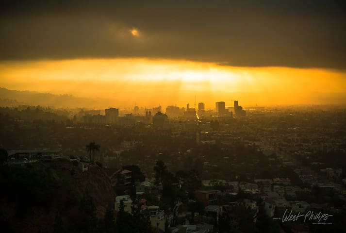 Hollywood in the morning