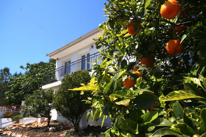 Spanish Country Villa with pool and gardens - Masllorenç - Talo